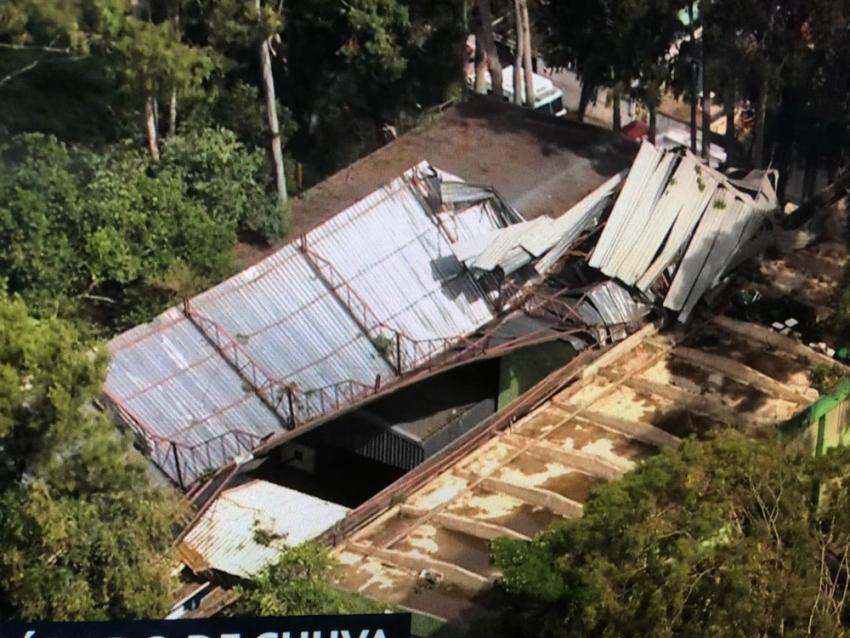 rajadas de vento derrubam árvores e destelham casas em SP